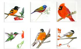 Bird Quilt of the East Coast