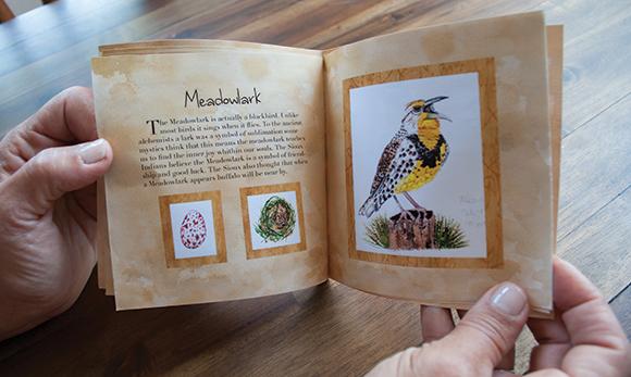 meadowlarksaveforwebmeaningofbirds