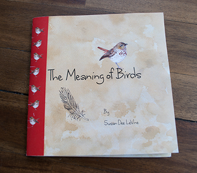 meaning-of-birds-save-for-web