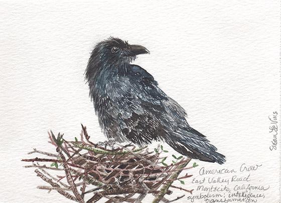 LeVine_crow_on_a_nest copy_web