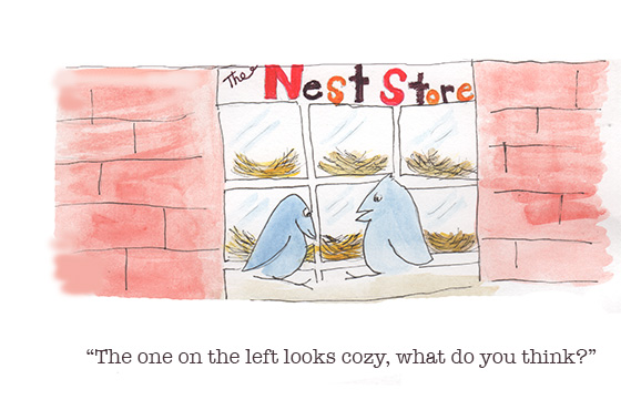 Levine_nest store _web