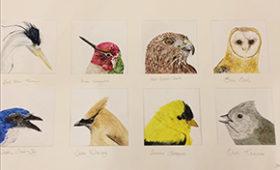 Big Bird Heads