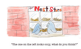 Nest Store Shopping