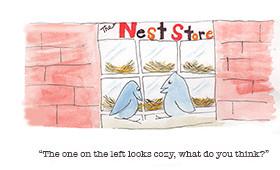 Nest Store Shopping