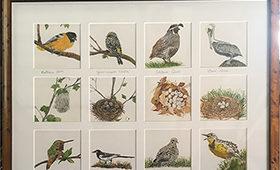 Bird Quilt 2020